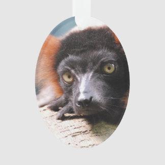 Resting Red Ruffed Lemur Ornament