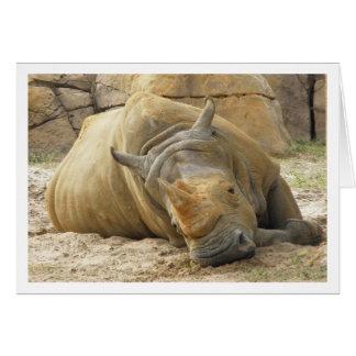Resting Rhino Card