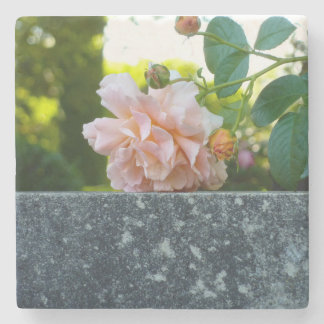 Resting Rose Marble Coaster