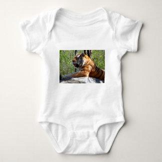 Resting Tiger Baby Bodysuit