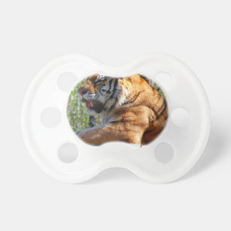 Resting Tiger Baby Pacifiers