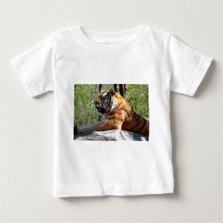 Resting Tiger Baby T-Shirt