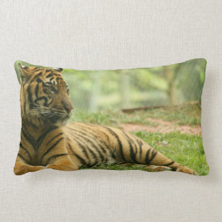 Resting Tiger Pillow