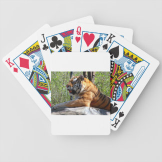 Resting Tiger Poker Deck
