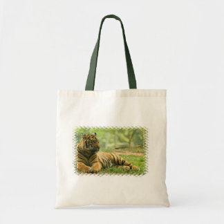 Resting Tiger  Small Bag