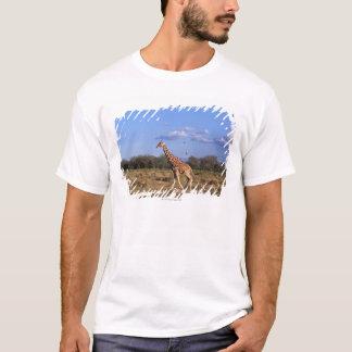 Reticulated Giraffe 2 T-Shirt