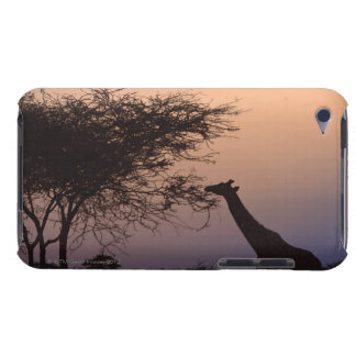 Reticulated Giraffe iPod Touch Case