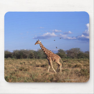 Reticulated Giraffe Mouse Pad