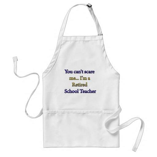 Retired School Teacher Standard Apron