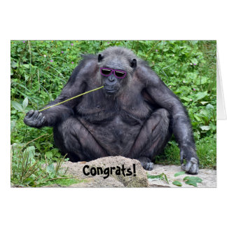 retirement-chimpanzee with sunglasses card
