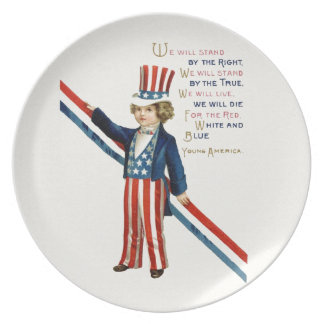 Retro 4th July independence day Plate