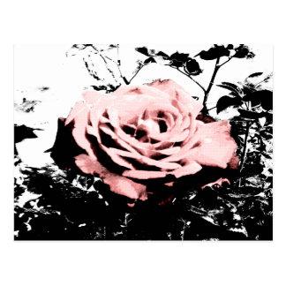 Retro Rose Postcard
