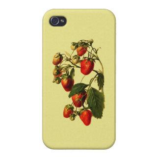 Retro Strawberries iPhone 4 Covers