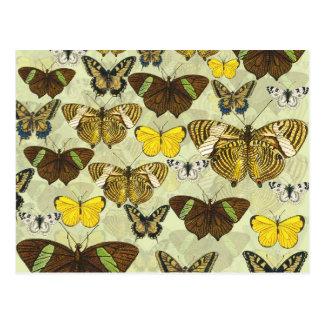Retro Vintage Butterflies Pattern Postcard