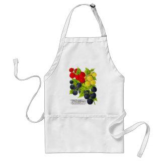 Retro Vintage Fruit Berries Blackberries Varieties Standard Apron