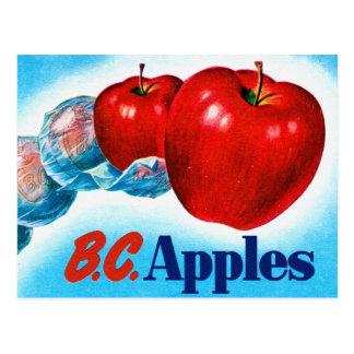Retro Vintage Kitsch Apple Art B.C. Apples Postcard
