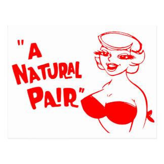 Retro Vintage Kitsch Cartoon Pinup Natural Pair Postcard