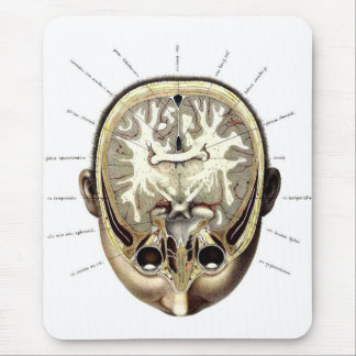 Retro Vintage Kitsch Monster Anatomy Exposed Brain Mouse Pad