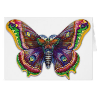 Retro Vintage Victorian Butterly Illustration Cards