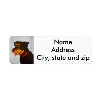 Return address labels. rot.mix return address label