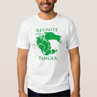 Reunite Pangea Tshirts