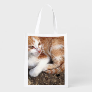 Reusable Bag Animatext