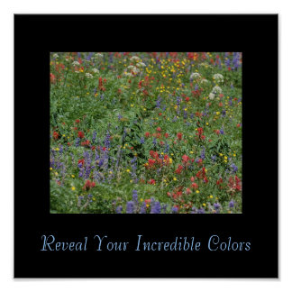 Reveal Your Incredible Colors Poster