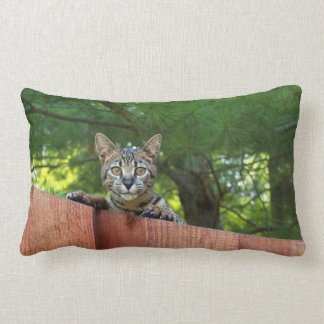 Reversible Serval Savannah Cats on a Pillow