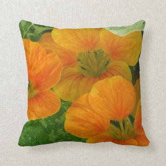 Reversible Summer and Fall Pillow