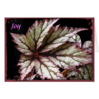 Rex Begonia Greeting Card