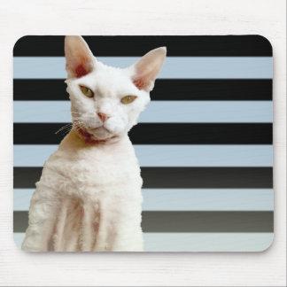 Rex Cat Blue/Black Stripe Mousepad