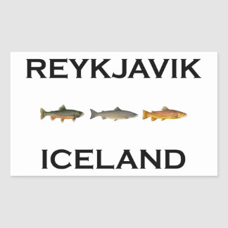 Reykjavik Iceland Fly Fishing