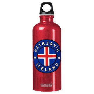 Reykjavik Iceland Water Bottle
