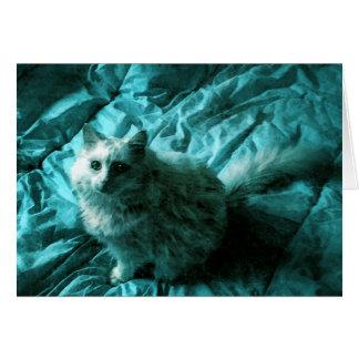 Rhapsody in Blue Cat Card