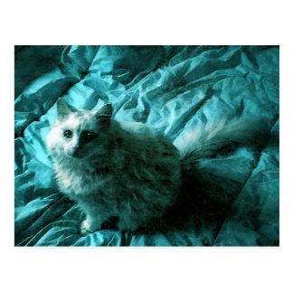 Rhapsody in Blue Cat Postcard