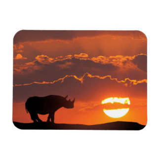 Rhino at sunset, Masai Mara, Kenya Rectangular Photo Magnet
