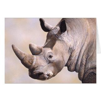 Rhino Card