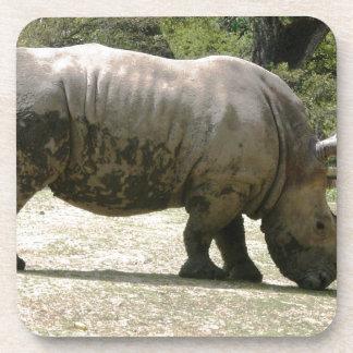 Rhino Drink Coasters