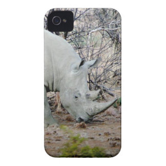 Rhino from South Africa iPhone 4 Cases