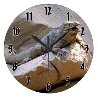 Rhino Iguana Clocks