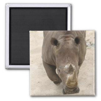 Rhino Square Magnet