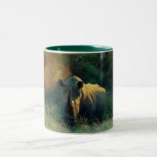 Rhino stare coffee mugs & cups