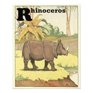 Rhinoceros at the Watering Hole Alphabet Art Photo