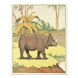 Rhinoceros at the Watering Hole Illustrated Photograph