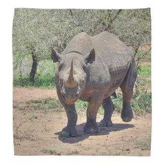 rhinoceros bandanna