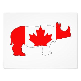 Rhinoceros Canada Photograph