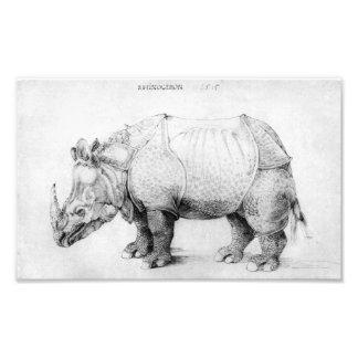 Rhinocéros d'Albrecht Durer Impression Photo