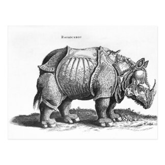 Rhinoceros, from 'Historia Animalium' Postcard