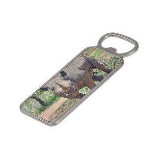 rhinoceros magnetic bottle opener