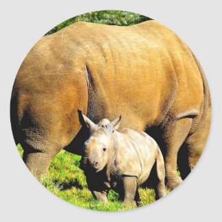rhinoceros mother and calf classic round sticker